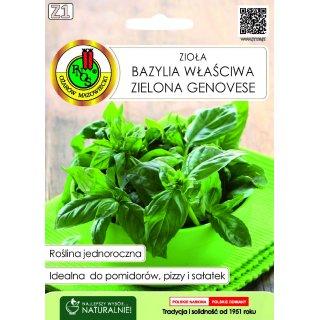 Bazylia Właściwa Zielona Genovese 0,3 g