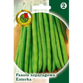 Fasola Szparag.Zielona Karłowa Esterka 20 g