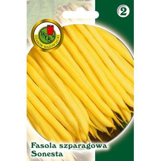 Fasola Szparag.Żółta Karłowa Sonesta 20 g