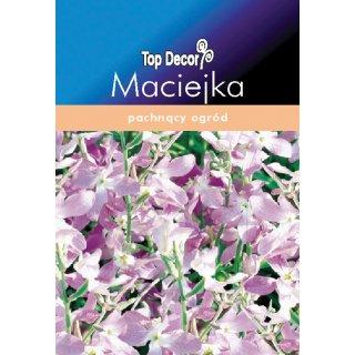 Maciejka Lavender pink FLORALAND