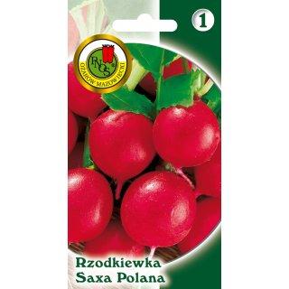 Rzodkiewka Saxa 2 5 g