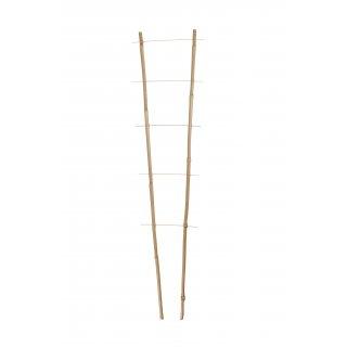Podpora kwiatowa bambus 60 cm podwójna TIN TOURS