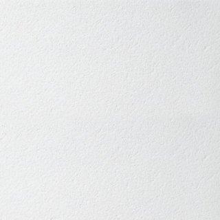 Płyta mineralna BioGuard Plain Board  600x600x15mm