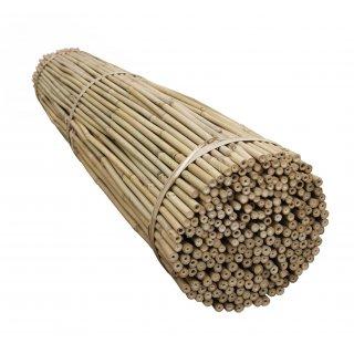 Tyczki bambusowe 105 cm 10-12 mm-100 szt TIN TOURS